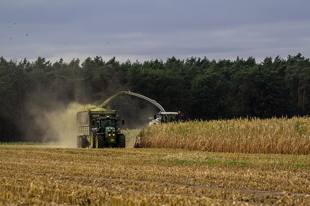 agricoltura basilicata alsia